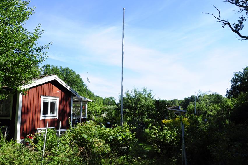 http://samsonblond.com/files/gimgs/30_sweden-summer-20100165.jpg